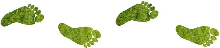 footprint_redigerad